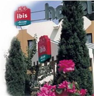 Ibis Mendoza