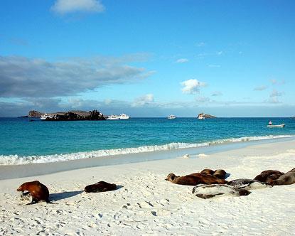Isla Espanola Hood Island Galapagos