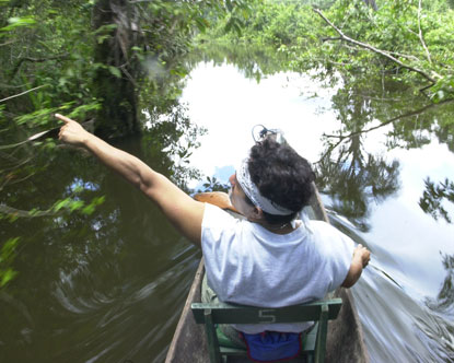 Amazon Canoe Rides Virtual Tour