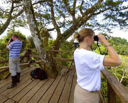 Amazon Observation Towers Virtual Tour