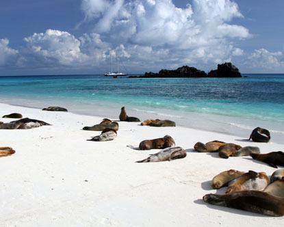 Galapagos Island Travel Vacation